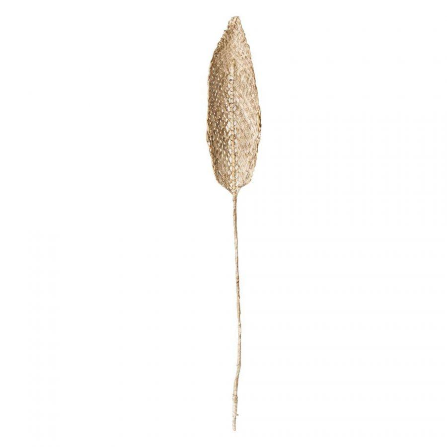 decoratief blad planta de praia trendhopper_0000_104340_.jpg